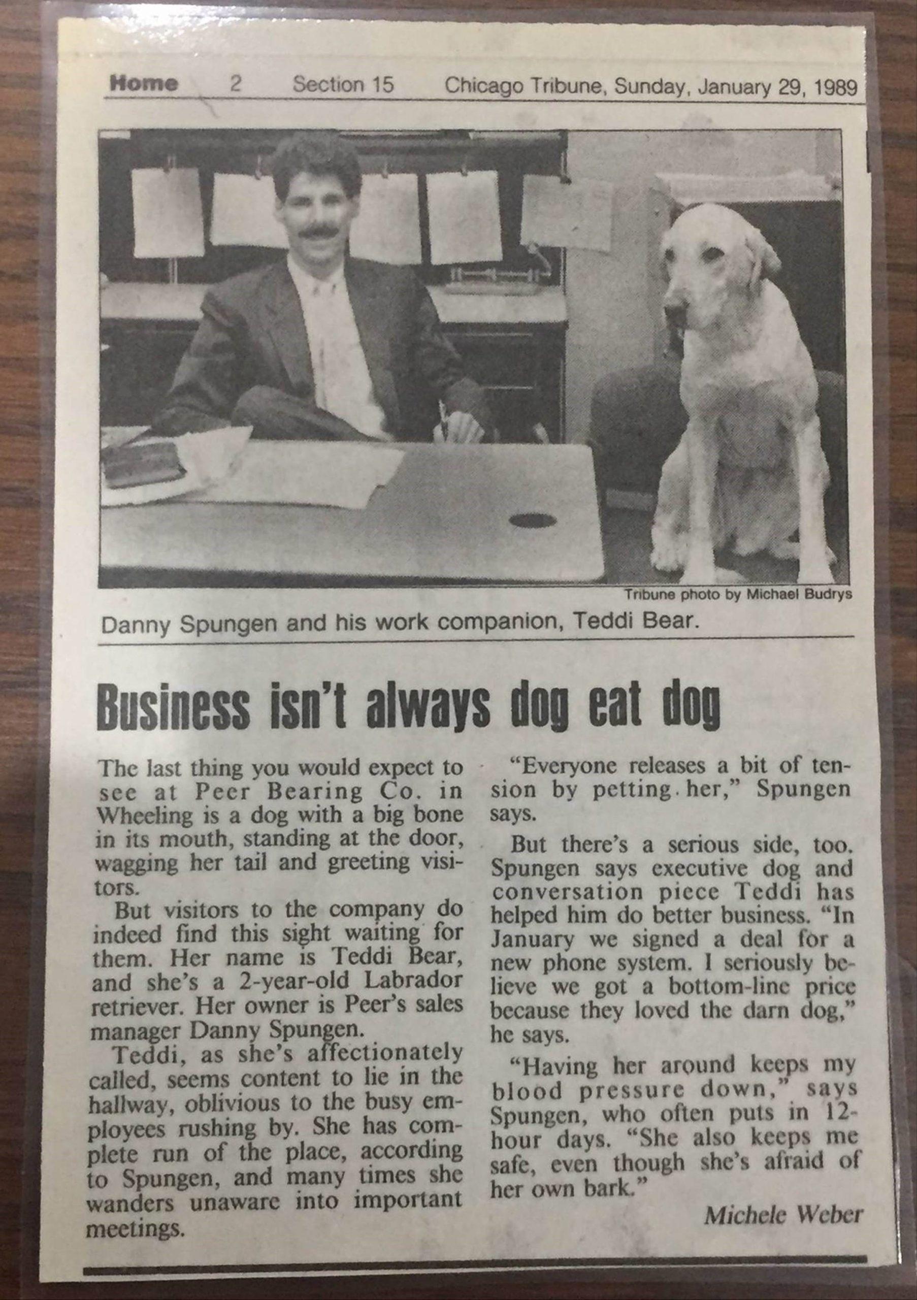 January 29, 1989